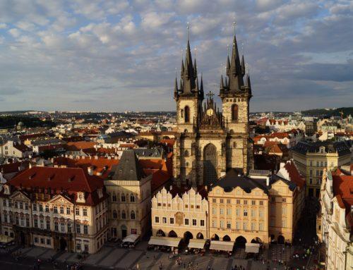Čínská politika partnerství: Jak Praha vyměnila pandu za luskouna